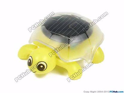 Light Yellow, Hungry Tortoise