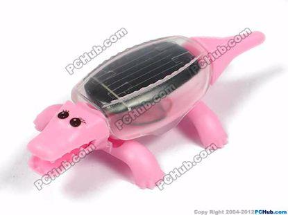 Solar mini crocodile, Pink