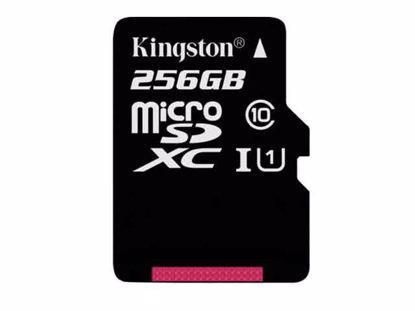 microSDXC256GB, SDCX10/256GB